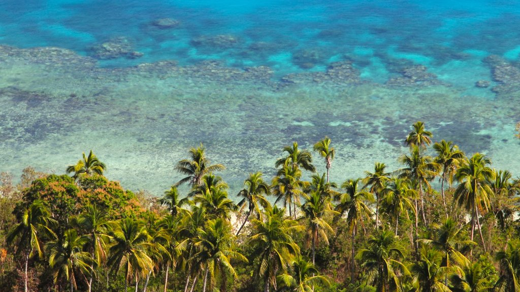 Fiji featuring general coastal views and tropical scenes