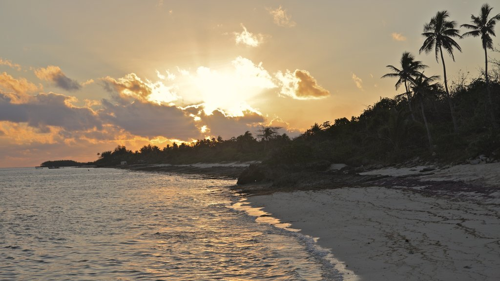 Viwa Island showing a sunset, a beach and tropical scenes