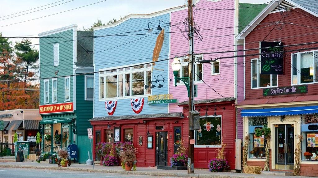 North Conway que incluye una pequeña ciudad o pueblo y flores