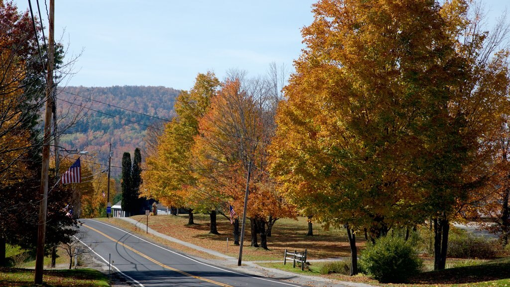 Sugar Hill featuring a garden and autumn leaves