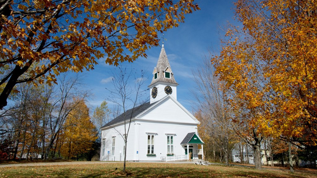 Sugar Hill showing fall colors, a garden and a church or cathedral