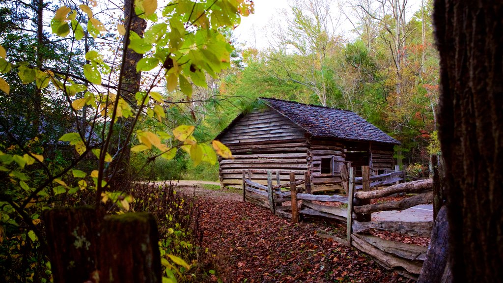 Cades Cove which includes a garden, autumn leaves and heritage elements