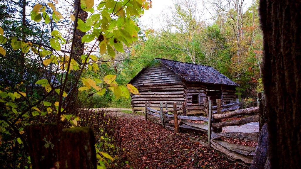 Cades Cove mostrando hojas de otoño, elementos del patrimonio y un parque