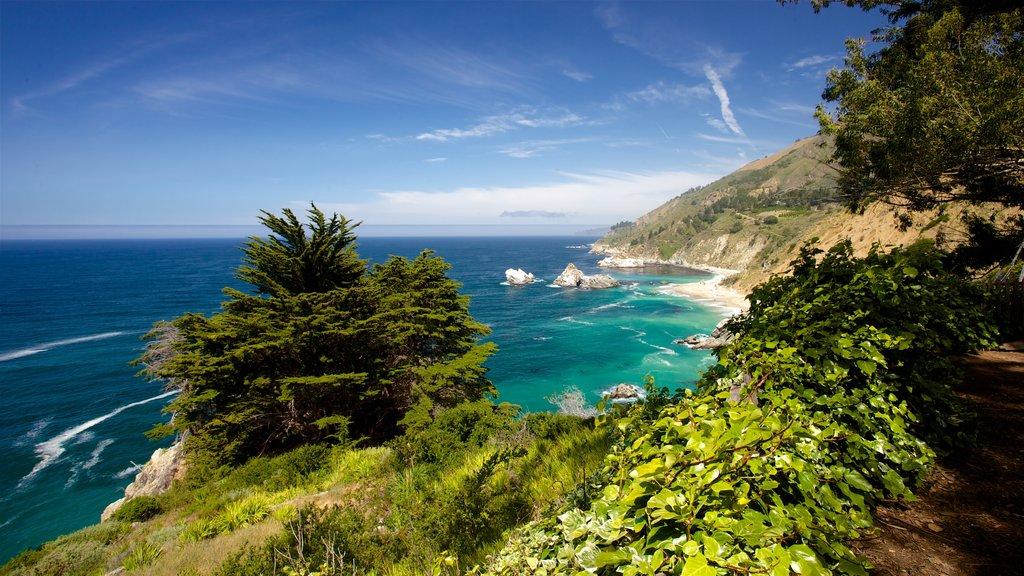 Big Sur mostrando vistas generales de la costa y costa escarpada