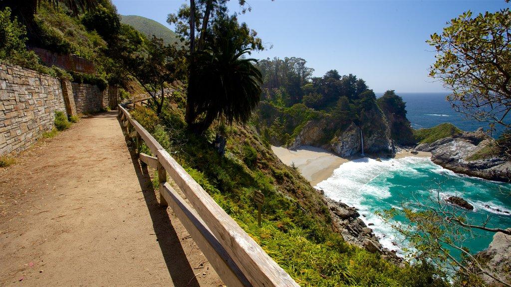 Big Sur que incluye costa rocosa y vistas generales de la costa