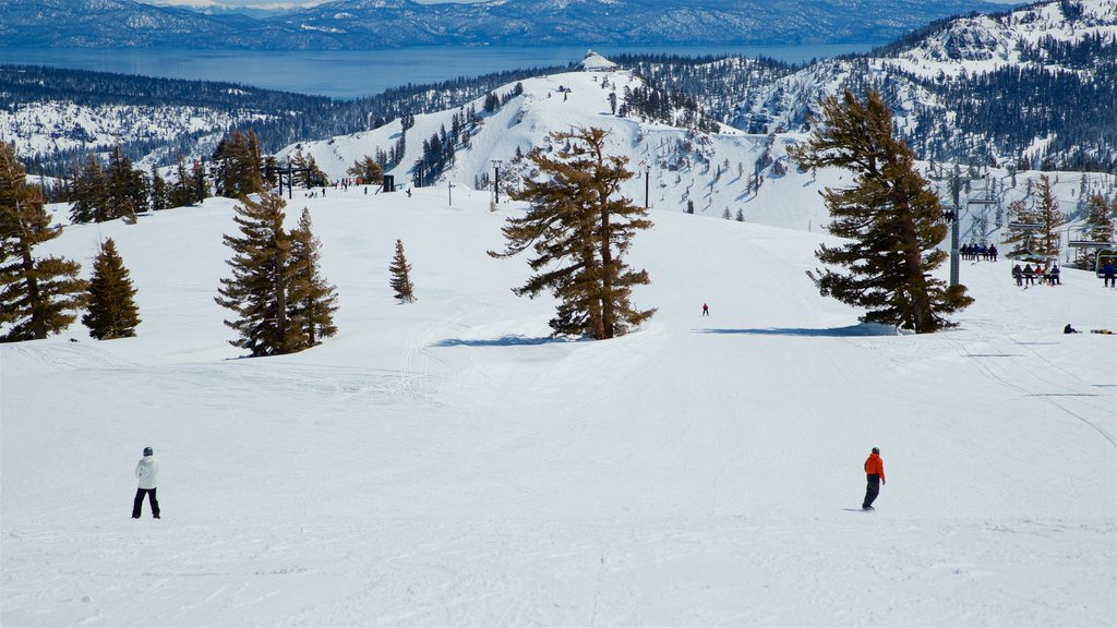 Squaw Valley Resort showing landscape views, snow and tranquil scenes