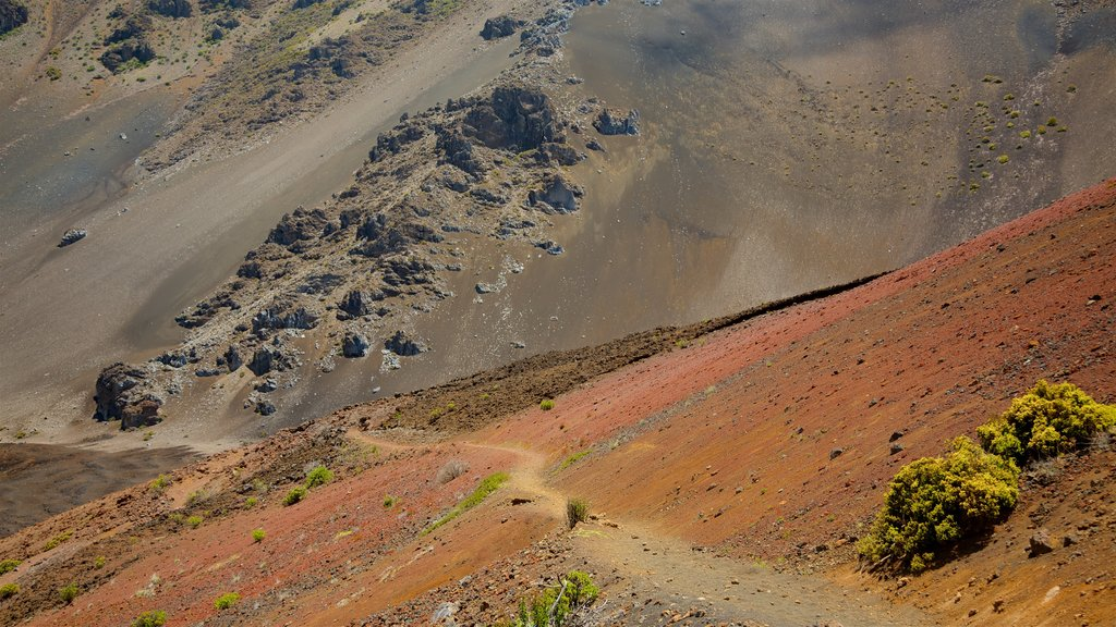 Haleakala National Park featuring desert views
