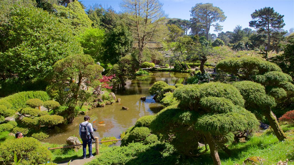 Japanese Tea Garden showing a pond, heritage architecture and a garden