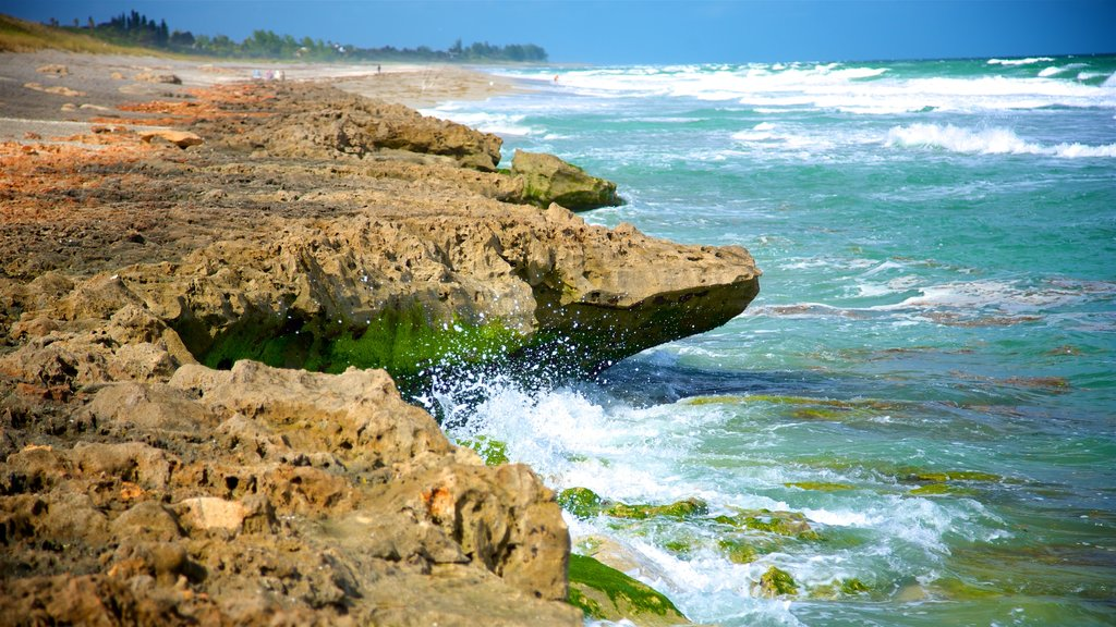 Jupiter Beach which includes surf, general coastal views and rocky coastline