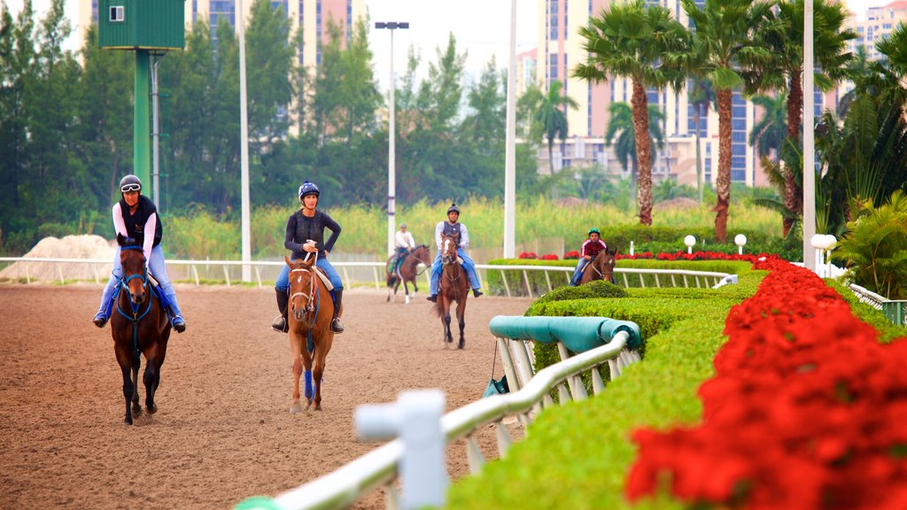 Gulfstream Park Racing and Casino featuring land animals as well as a small group of people
