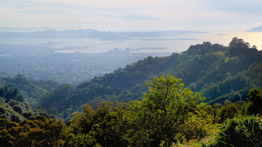 Berkeley featuring landscape views and tranquil scenes