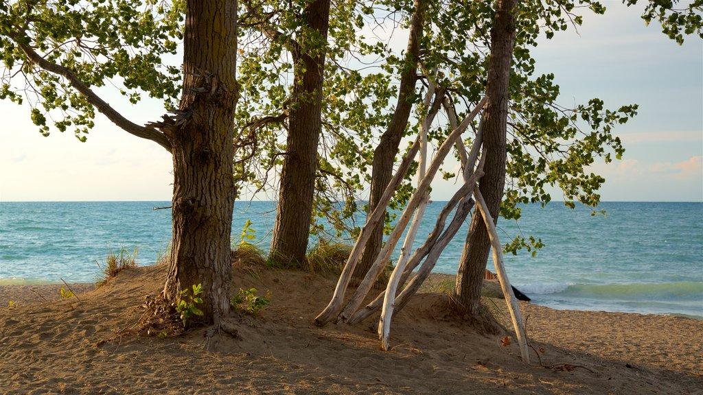 Erie ofreciendo una playa de arena, vistas generales de la costa y una puesta de sol