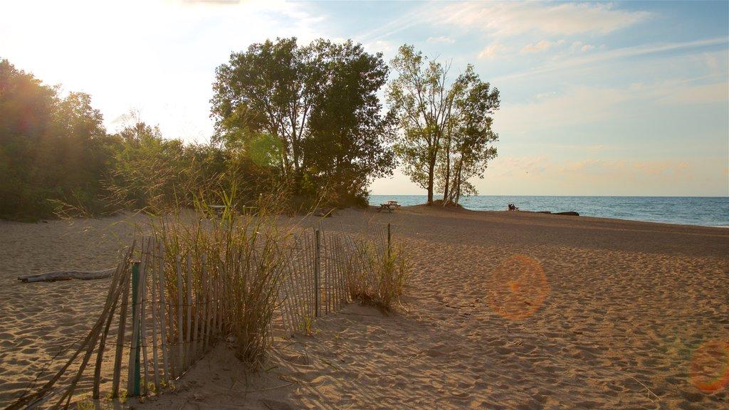 Erie ofreciendo vistas generales de la costa, una puesta de sol y una playa de arena