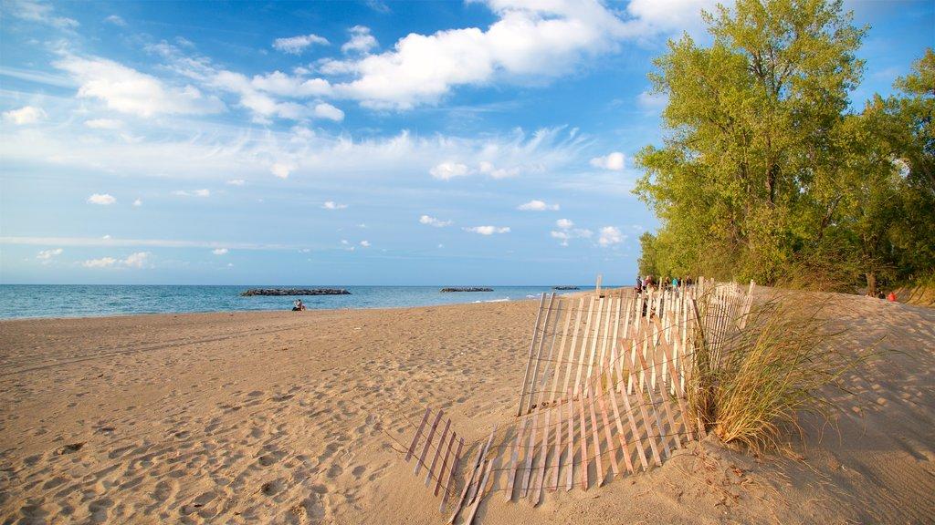 Erie mostrando vistas generales de la costa y una playa de arena