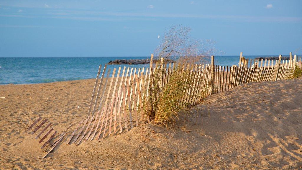 Erie mostrando una playa de arena y vistas generales de la costa