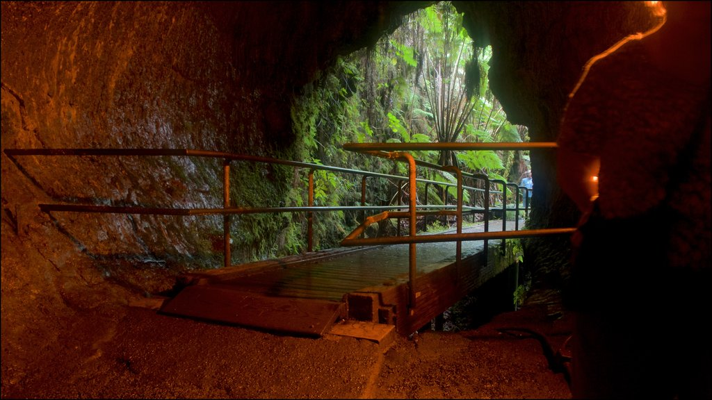 Hawaii Volcanoes National Park featuring a bridge, interior views and caves