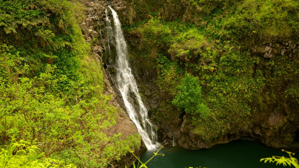Maui Island showing a cascade and a lake or waterhole