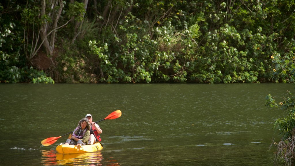 Wailua River State Park which includes wetlands, kayaking or canoeing and a river or creek