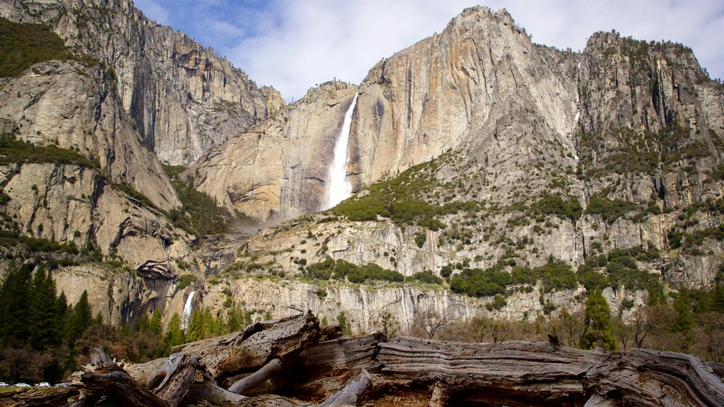 Mariposa showing a cascade and mountains