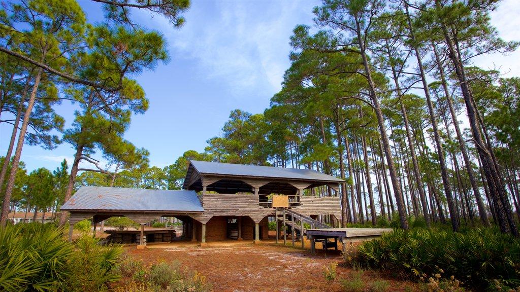 St. Andrews State Park caracterizando uma casa e cenas tranquilas