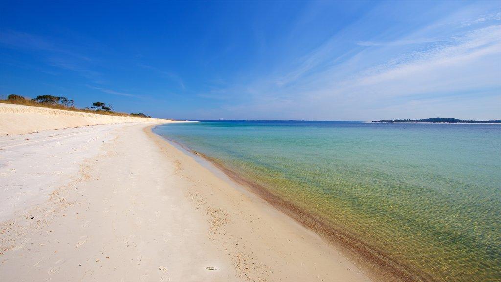 St. Andrews State Park que inclui paisagem, paisagens litorâneas e uma praia de areia