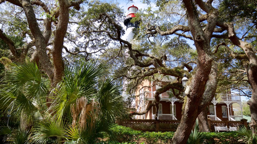 St. Augustine Lighthouse and Museum featuring a park, a lighthouse and a house