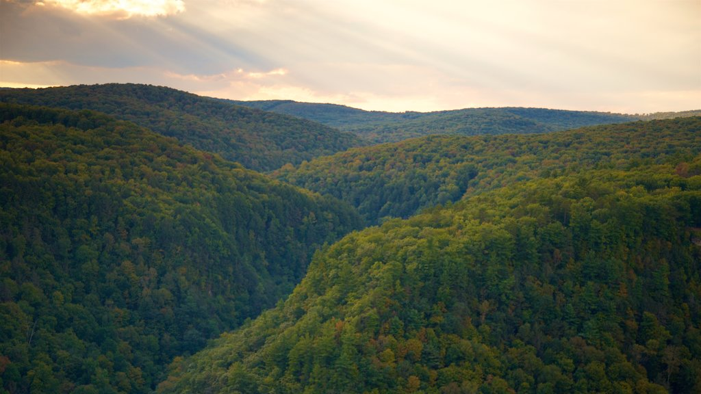 Pine Creek Gorge which includes a gorge or canyon, landscape views and a sunset