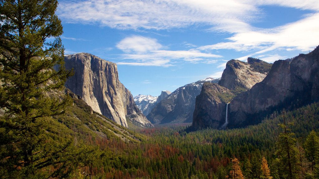 Tunnel View featuring landscape views, tranquil scenes and a gorge or canyon