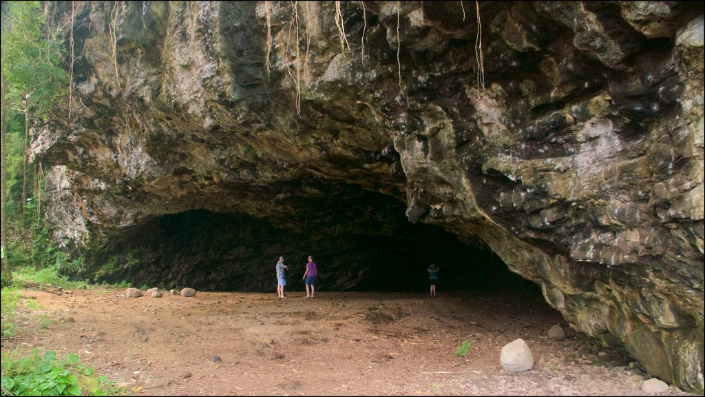 Maniniholo Dry Cave showing caves and caving as well as a small group of people