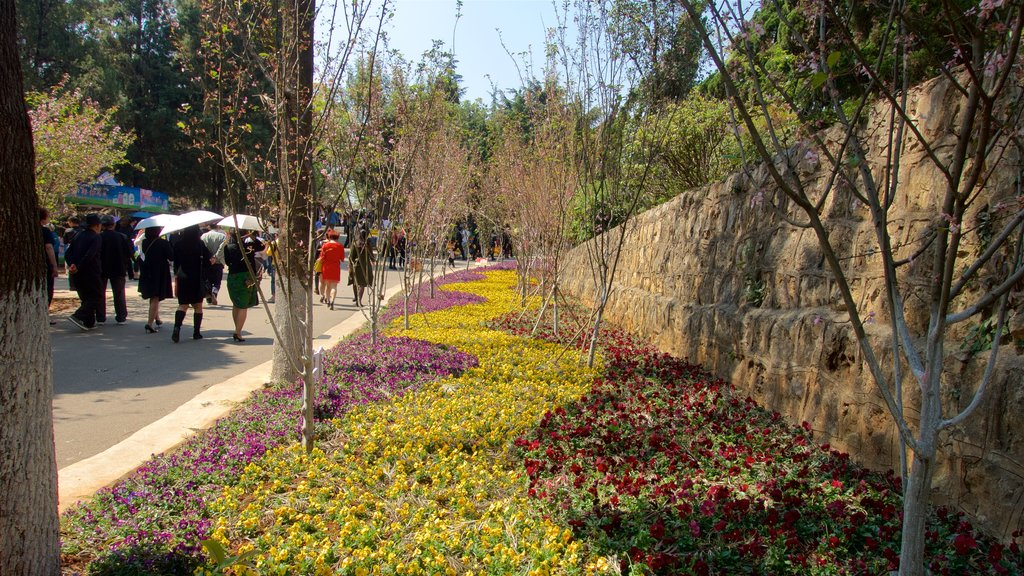 Kunming Zoo which includes flowers and a park as well as a small group of people