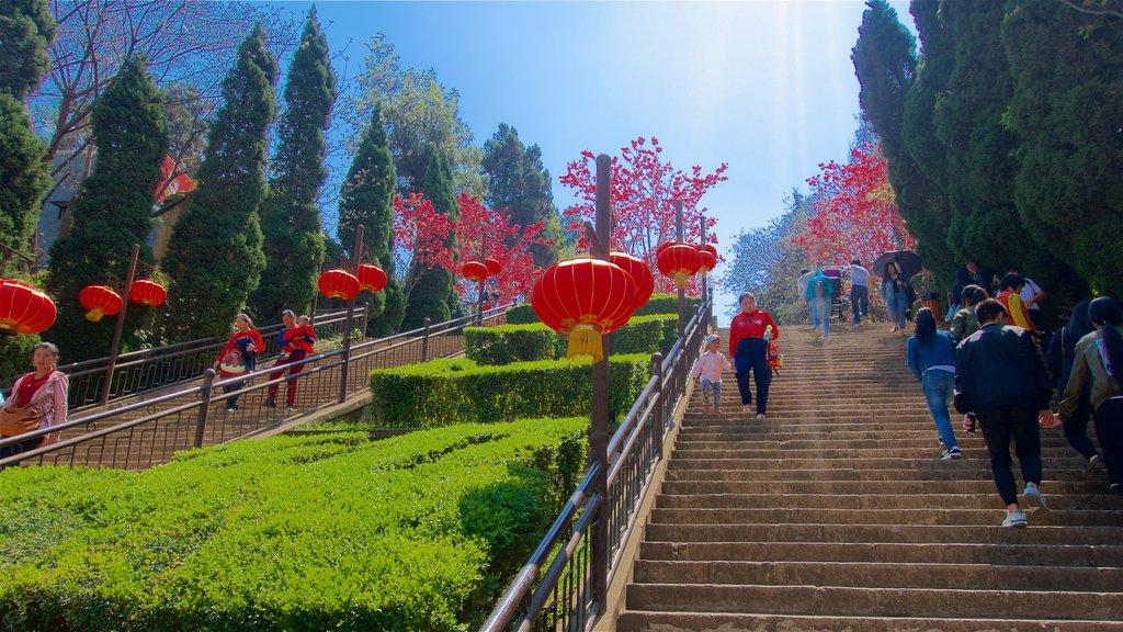 Kunming Zoo