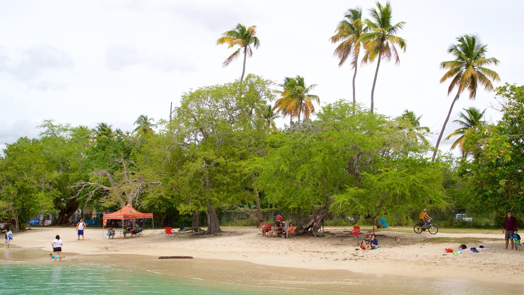 Boqueron Beach