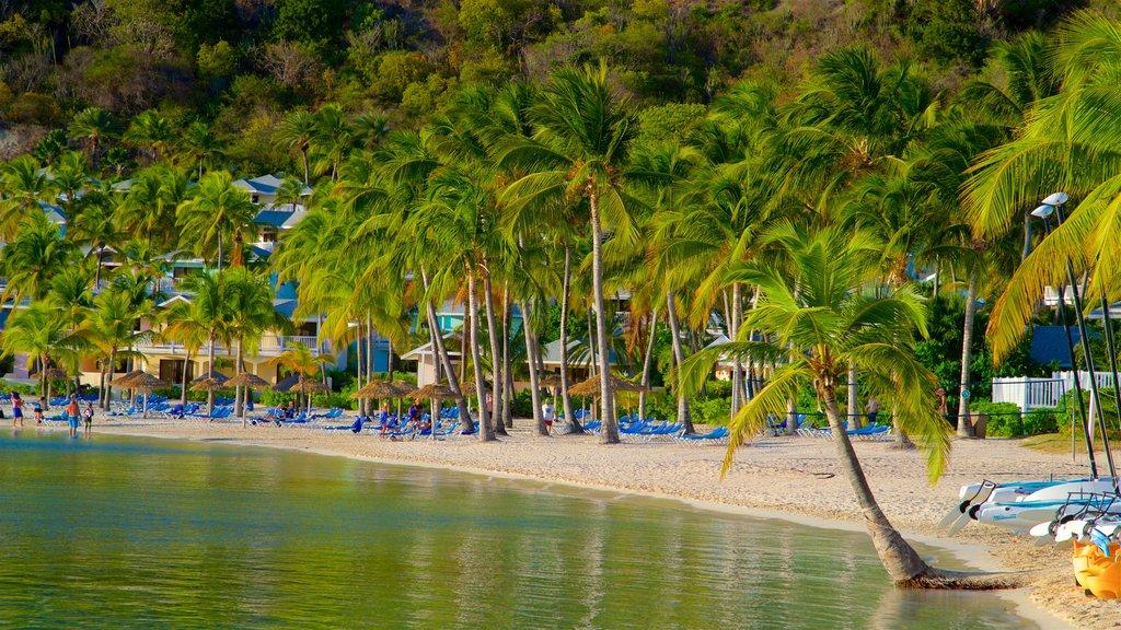 Mamora Bay featuring a sandy beach, general coastal views and tropical scenes