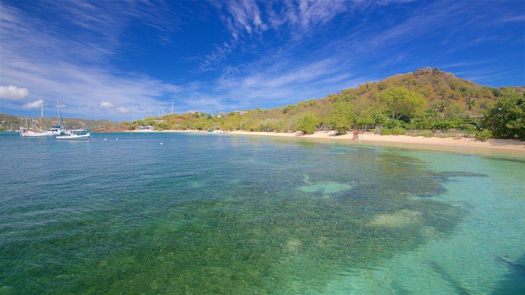 Pigeon\'s Point Beach featuring general coastal views and a sandy beach