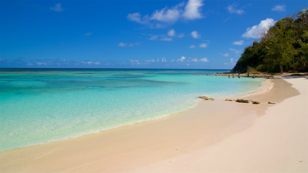 Long Bay featuring general coastal views, a beach and tropical scenes