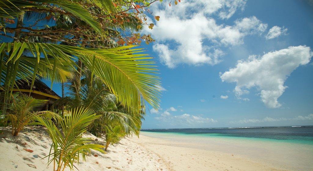 Samoa showing a beach and general coastal views