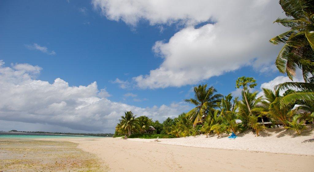 Samoa featuring a sandy beach, tropical scenes and general coastal views