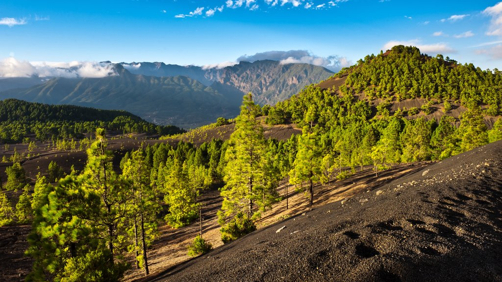 La Palma showing tranquil scenes and landscape views