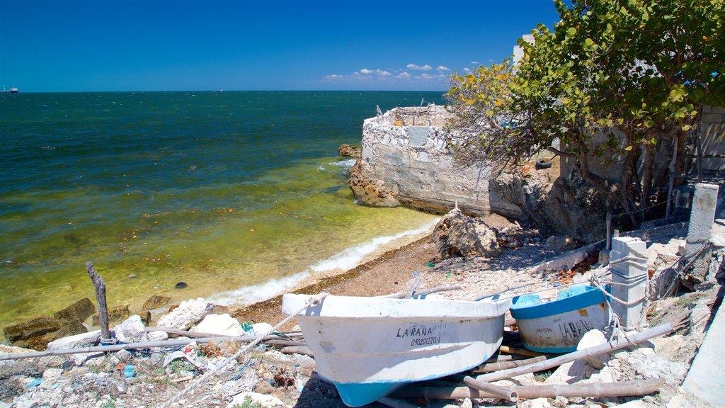 Lerma showing general coastal views
