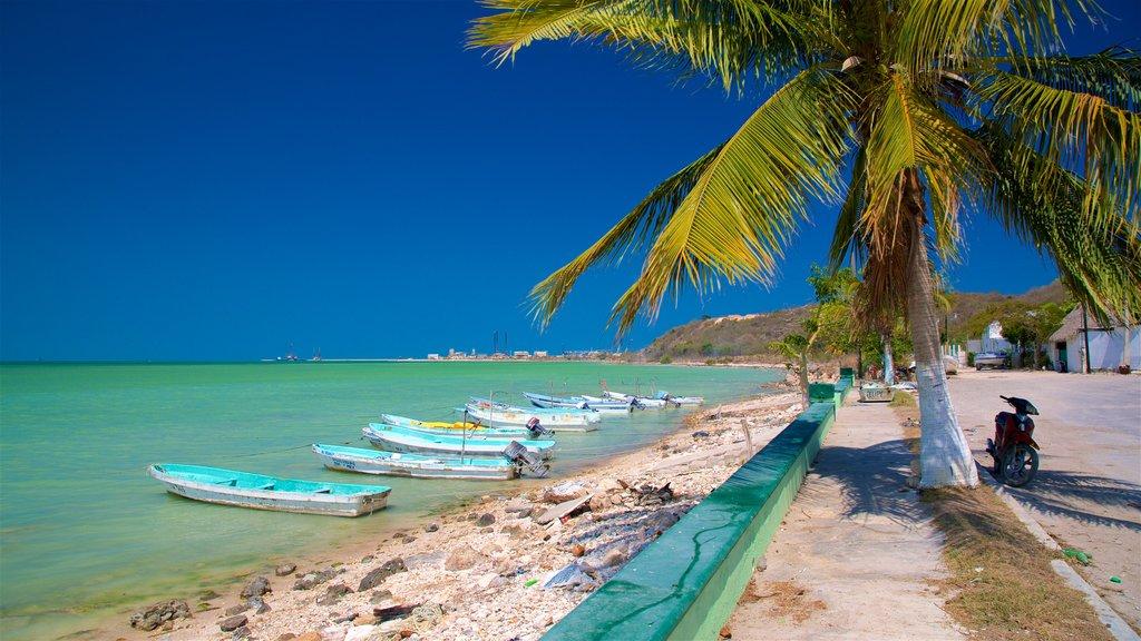 Seybaplaya featuring a beach, tropical scenes and rugged coastline