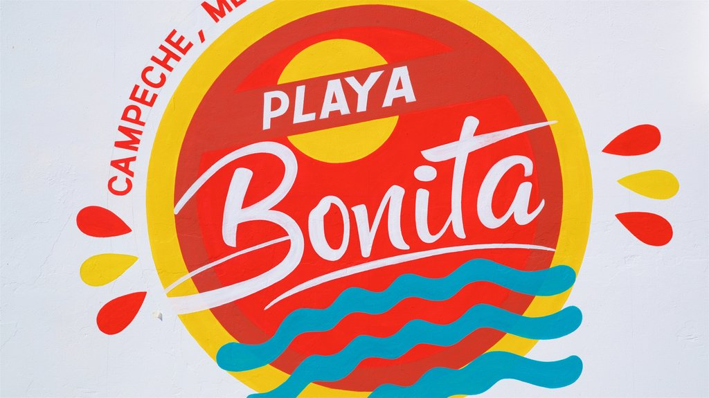 Bonita Beach showing signage