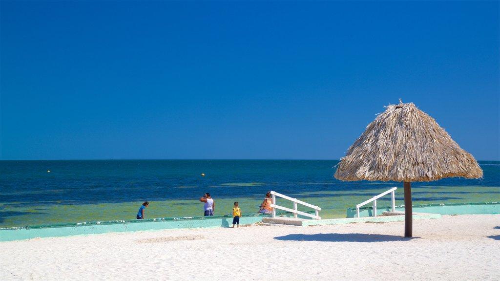 Bonita Beach featuring general coastal views, tropical scenes and a sandy beach