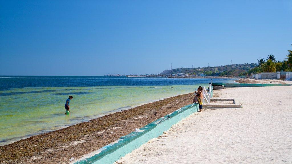 Bonita Beach which includes general coastal views, tropical scenes and a beach