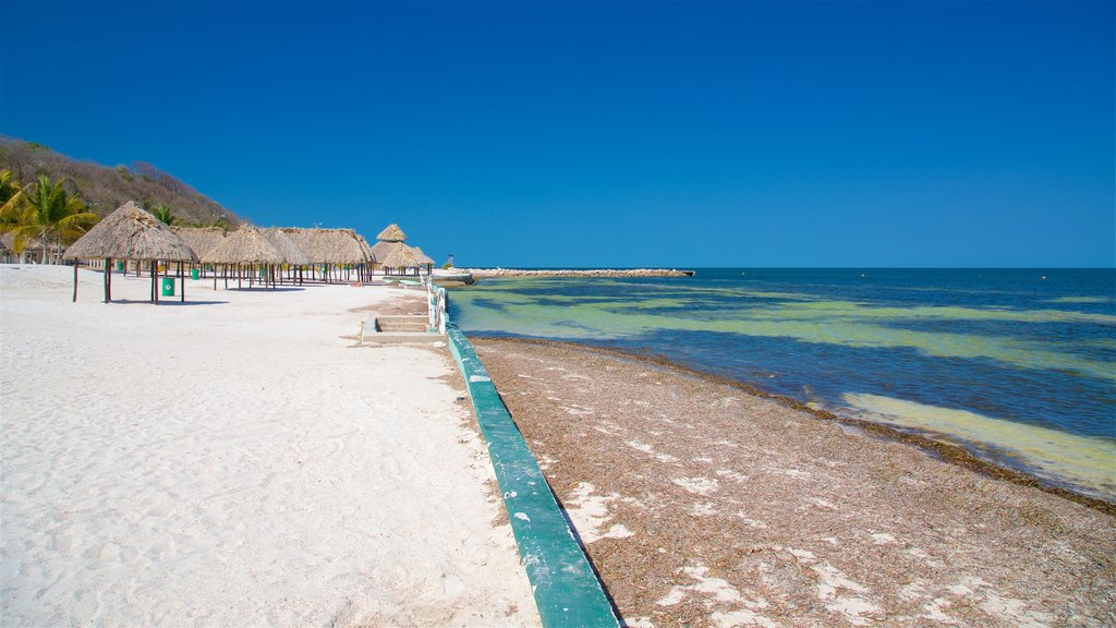 Bonita Beach which includes tropical scenes, general coastal views and a beach