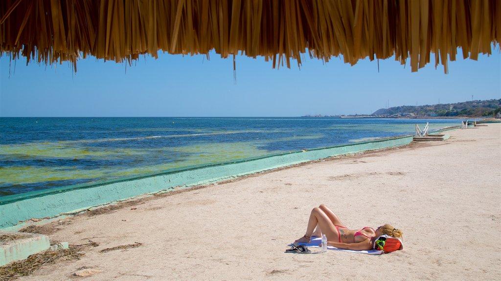 Bonita Beach showing general coastal views, a beach and tropical scenes