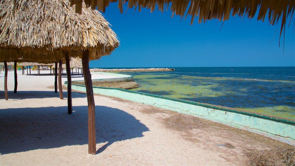 Bonita Beach showing general coastal views, tropical scenes and a beach