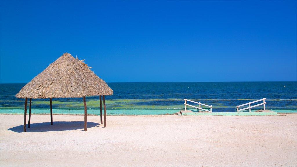 Bonita Beach which includes general coastal views, a beach and tropical scenes