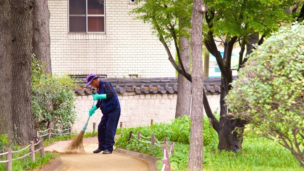 Busan mostrando un parque y también un hombre
