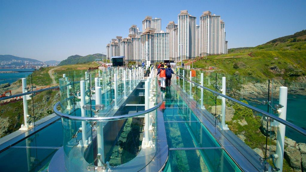 Busan que incluye vistas de paisajes, un edificio de gran altura y una ciudad