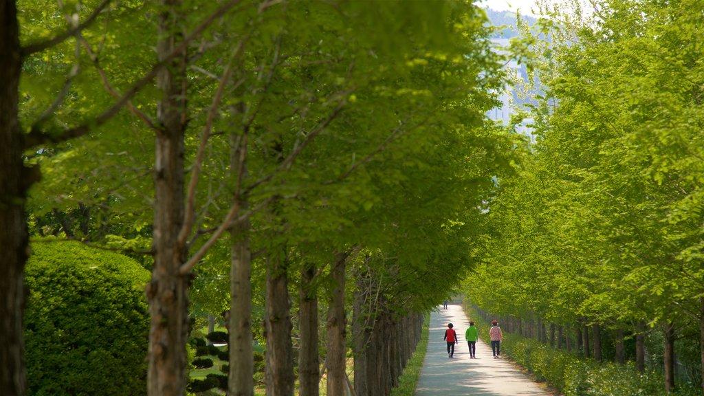 Cementerio de las Naciones Unidas mostrando senderismo o caminata y un parque y también un pequeño grupo de personas